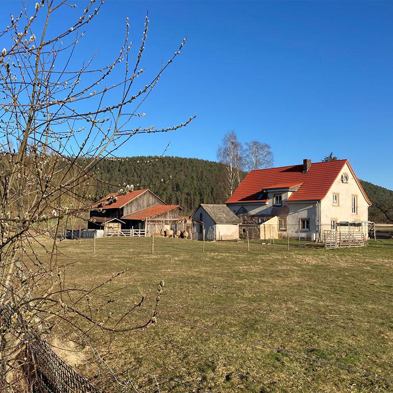 Heidelmuehle-Fruehling-Wollfra