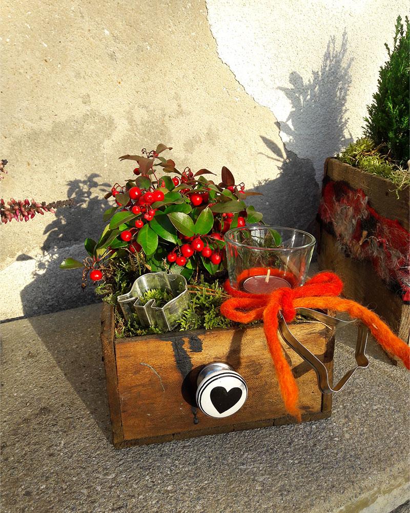 Schublade-bepflanzt-Firlefanz-Dekoration-Wollfra3
